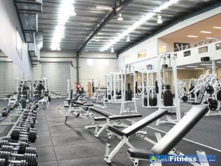 gym w free weights
